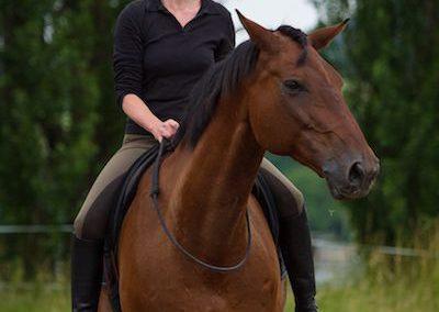 Tanja_Henkel_Pferd_Reiten