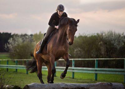 Tanja_Henkel_Springen_Pferd_Unterricht